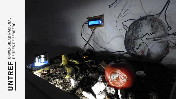 Resultado de imagen para Proyectos de la Universidad Nacional Tres de Febrero (UNTREF) fueron seleccionados por el Programa de Arte Innovart