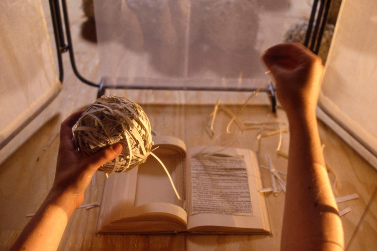 Taller de poesía: ¿Cuándo nace el poema?